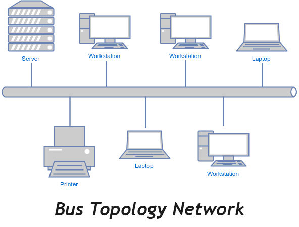 What is bus topology with example